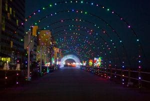 Private Bus Hire for Holiday Light Tours